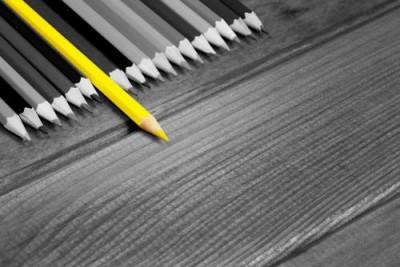 Kargem Araştırma Yazıları: İşletmelerde Eğitim ve Eğitim İhtiyaç Analizi
