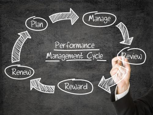 Performans Sistemleri Danışmanlığı