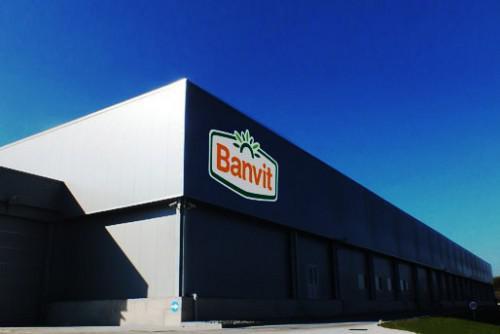banvit2